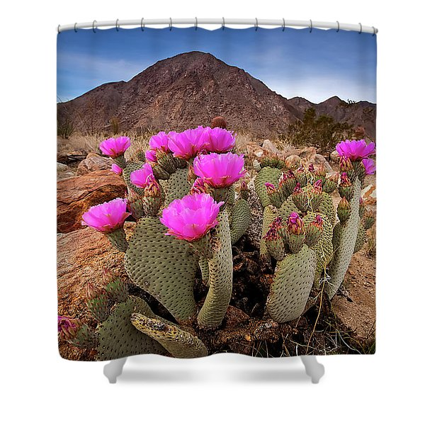 Henderson Canyon Beavertail Shower Curtain