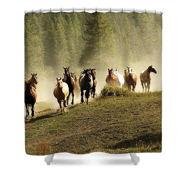 Herd Of Wild Horses Shower Curtain