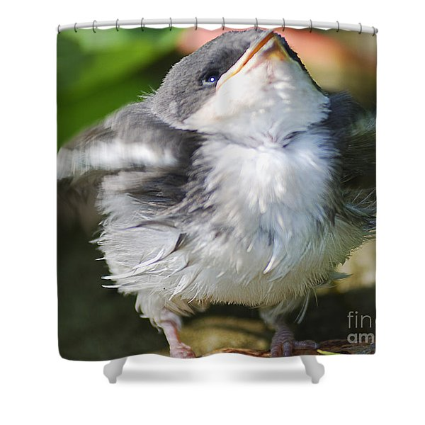 Here Comes Mommy Shower Curtain
