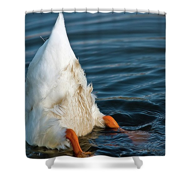 Here Is What I Think Shower Curtain