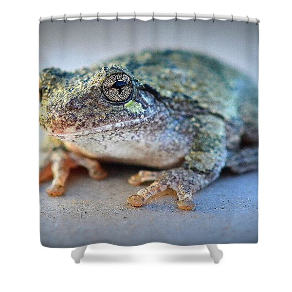 Here's Looking At You Shower Curtain