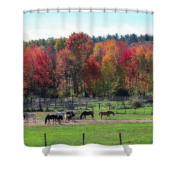 Heritage Farm In Easthampton, Ma Shower Curtain