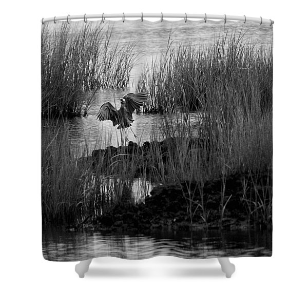 Heron And Grass In B/w Shower Curtain