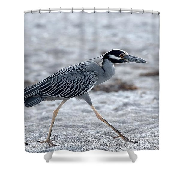 Yellow-crowned Night Heron On A Mission Shower Curtain