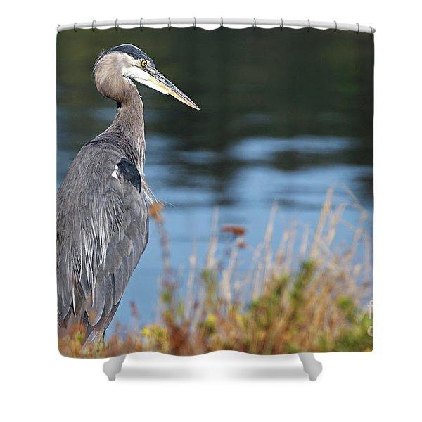 Heron On Pause Shower Curtain