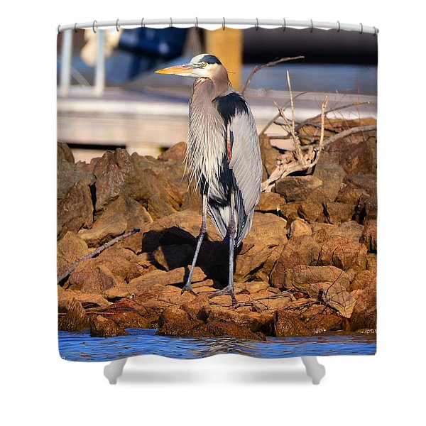 Heron On The Rocks Shower Curtain