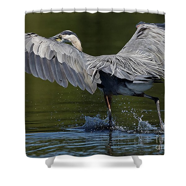 Heron On The Run Shower Curtain