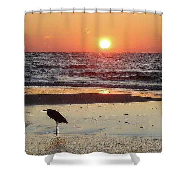 Heron Watching Sunrise Shower Curtain