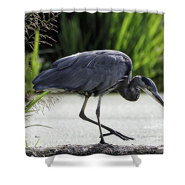 Herons Balance Shower Curtain