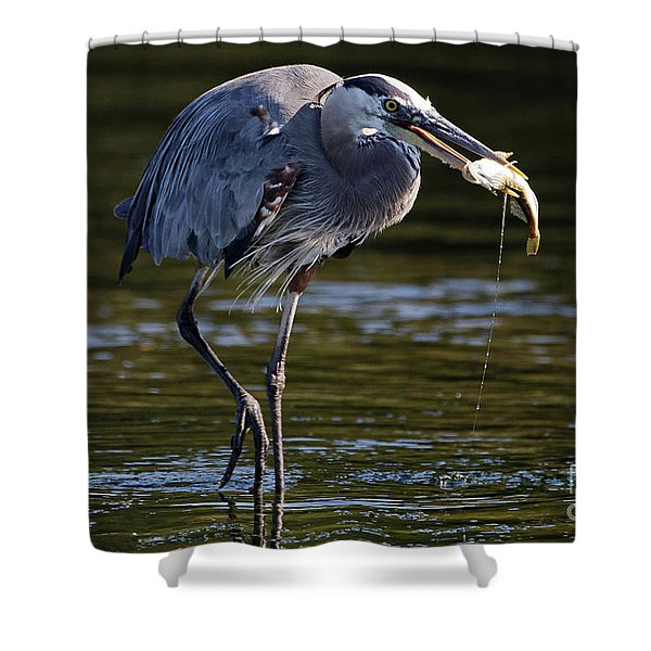 Herons Dinner Shower Curtain
