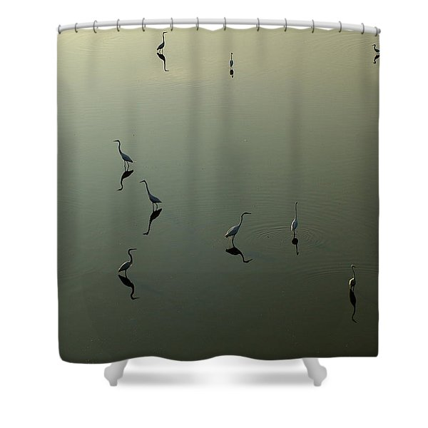 Herons On Lake 367 Shower Curtain