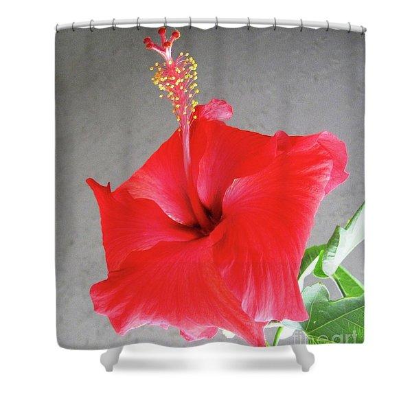 Hibiscus #2 Shower Curtain