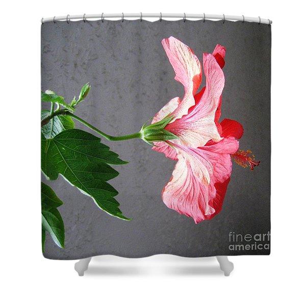 Hibiscus #4 Shower Curtain