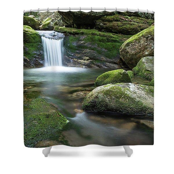 Hidden Beauty Shower Curtain