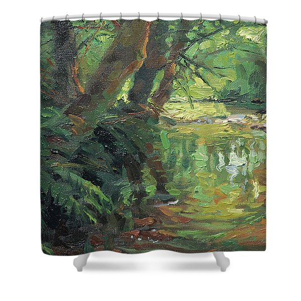 Hidden Stream Shower Curtain