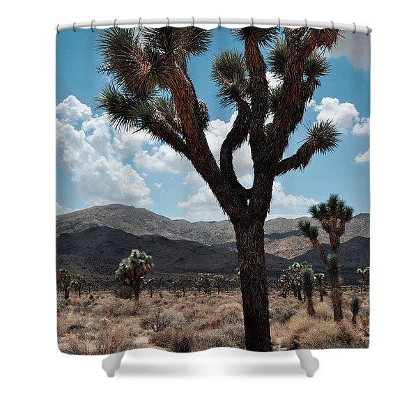 Hidden Valley Joshua Tree Portrait Shower Curtain