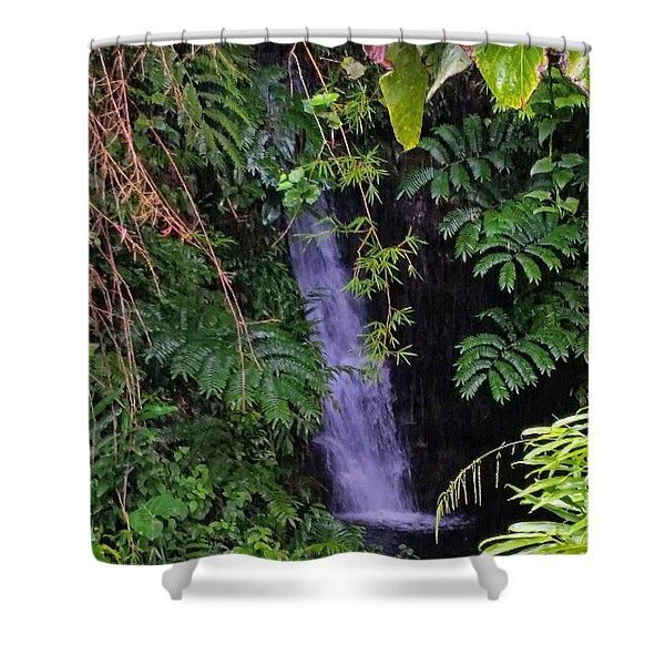 Small Hidden Waterfall  Shower Curtain