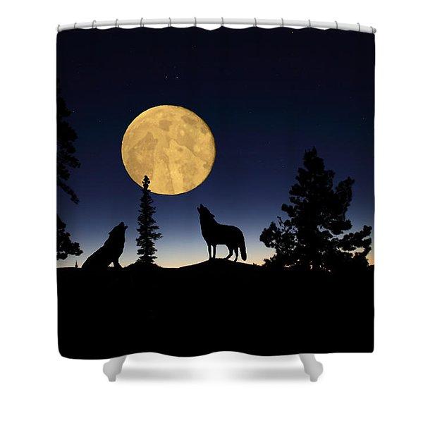 Hidden Wolves Shower Curtain