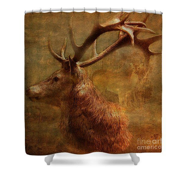 Hide And Seek 2015 Shower Curtain