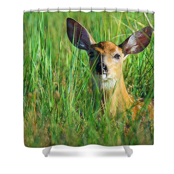 Shower Curtain featuring the photograph Hiding by John De Bord