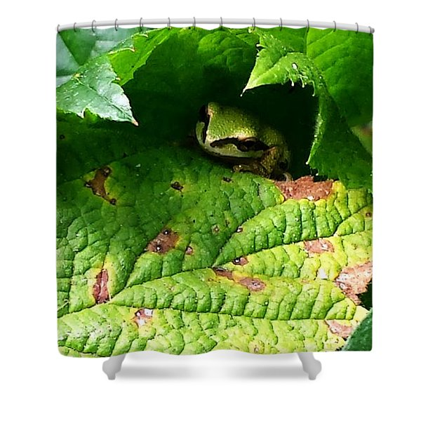Hiding Tree Frog Shower Curtain