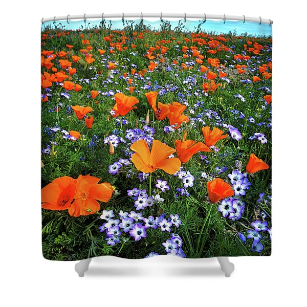 High Desert Wildflowers Shower Curtain