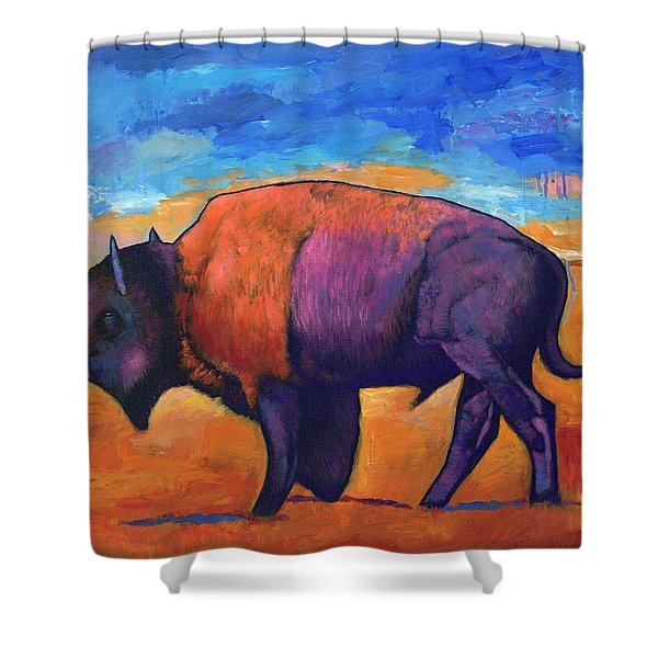 High Plains Drifter Shower Curtain