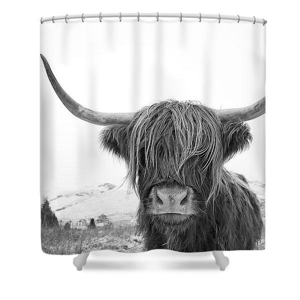Highland Cow Mono Shower Curtain
