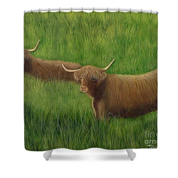 Shower Curtain featuring the painting Highland Cows by Tracey Goodwin