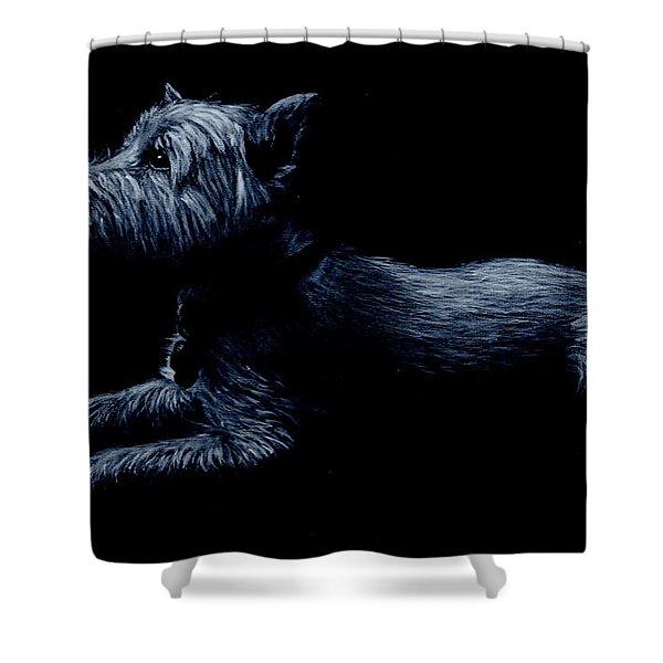 Highland Terrier Shower Curtain