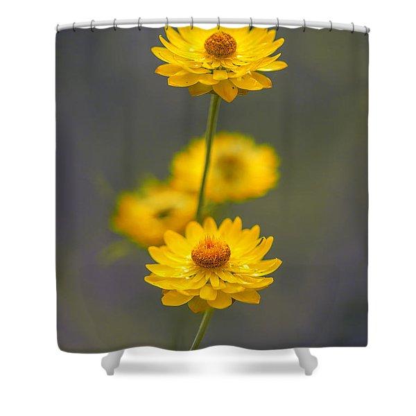 Hillflowers Shower Curtain