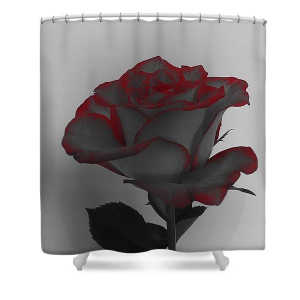 Hints Of Red- Single Rose Shower Curtain