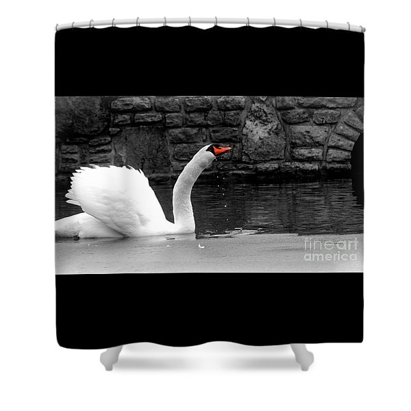 His Majesty On Ice Shower Curtain