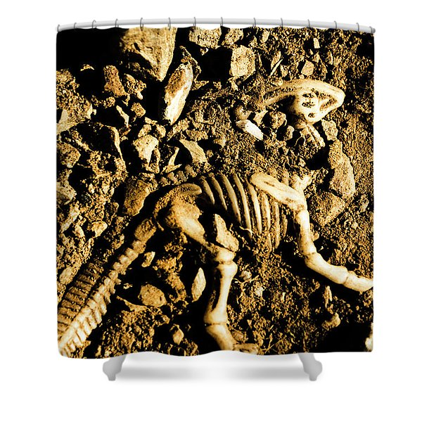 History Unearthed Shower Curtain