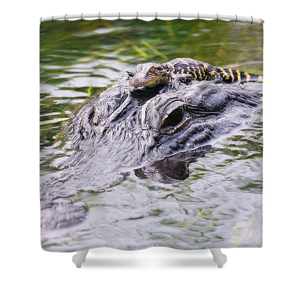 Hitchin' A Ride. Shower Curtain
