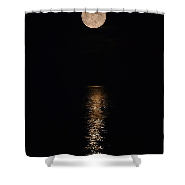Holiday Magic - Lunar Art Shower Curtain