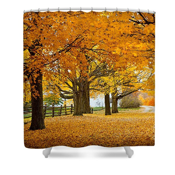 Hollis Farm Shower Curtain