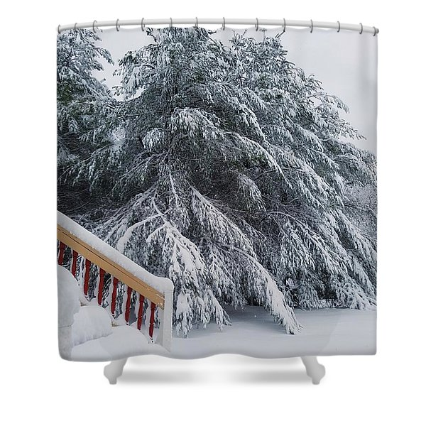 Home For The Blizzard Shower Curtain