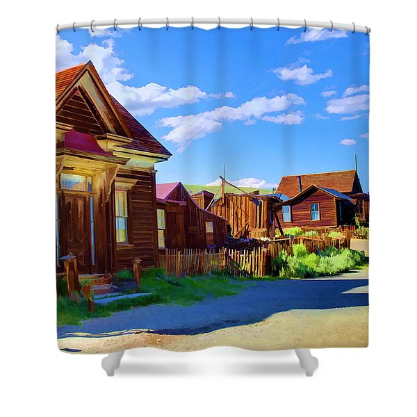 Homes Of The Past Shower Curtain