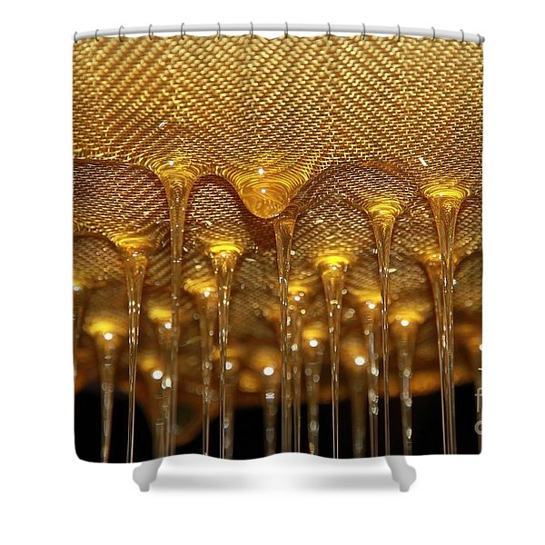 Honey Drip Shower Curtain