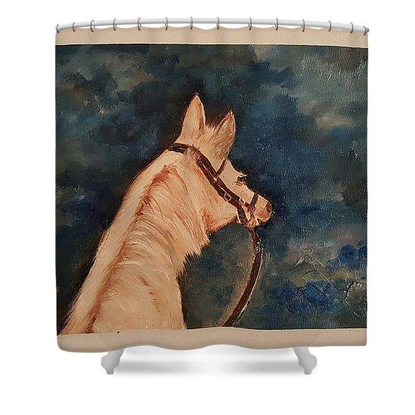 Honey Palomino Horse 28 Shower Curtain
