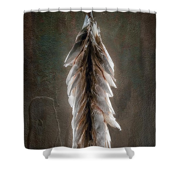 Hong Kong Orchid Seed Pod 2 Shower Curtain