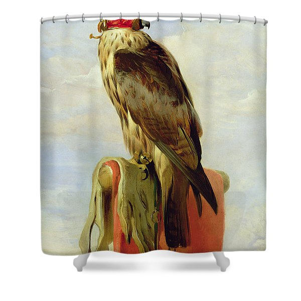 Hooded Falcon Shower Curtain