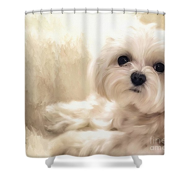 Hoping For A Cookie Shower Curtain