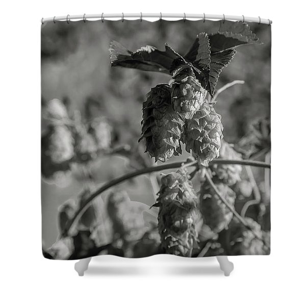 Hops Shower Curtain