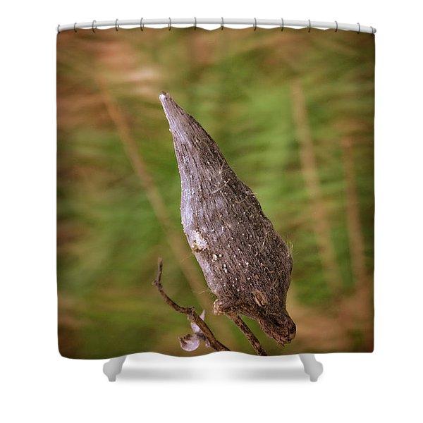 Horicon Marsh - Milkweed Shower Curtain