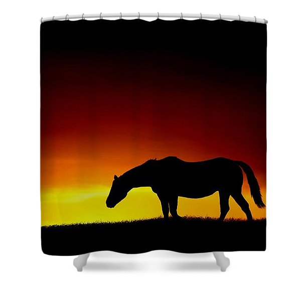 Horse At Sunset Shower Curtain