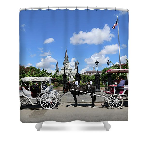 Horse Carriages Shower Curtain