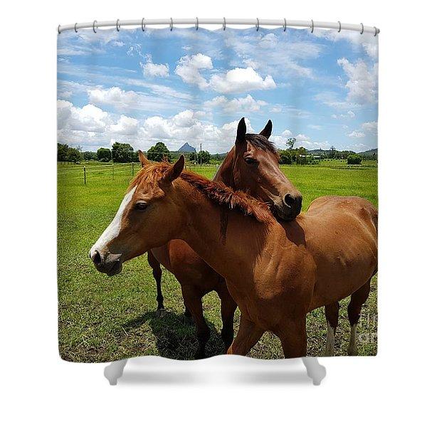 Horse Cuddles Shower Curtain