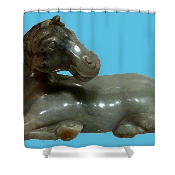 Horse Figure Shower Curtain